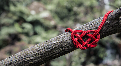 Article thumbnail - heart string